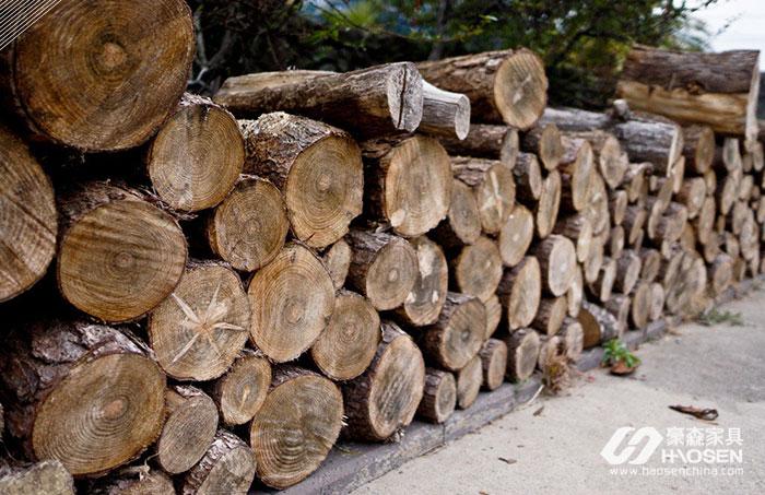 进口木材猫腻居多,一批货亏损39000美元!